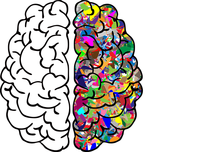 brain-2750415_640.png